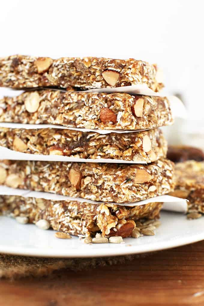 Multi Seed Granola Bar